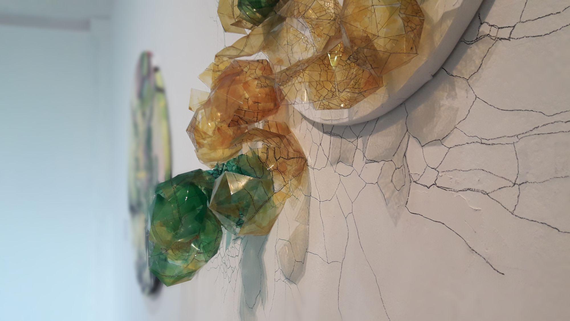 Muestra BOTÁNICAS IMAGINADAS en el Museo Vidal